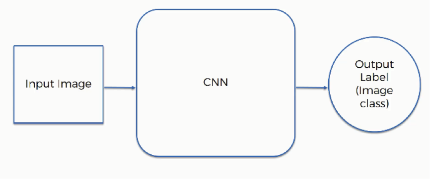 The Ultimate Guide to Convolutional Neural Networks (CNN