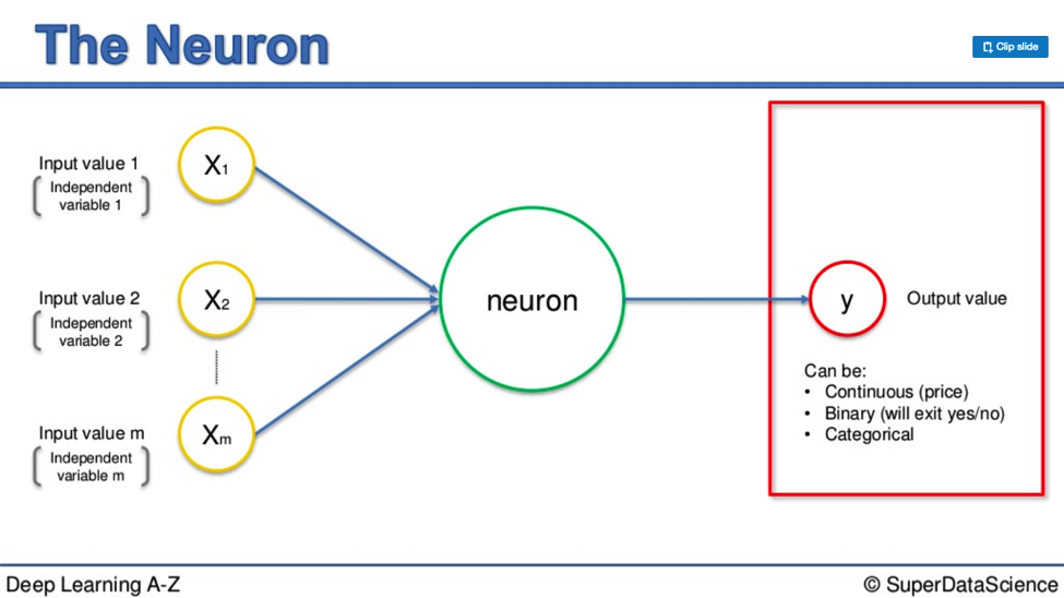 The Ultimate Guide to Artificial Neural Networks (ANN